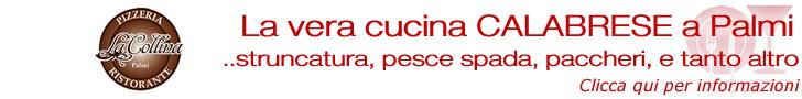 banner-italia-collinapalmi